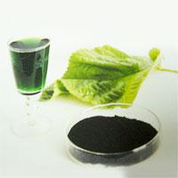 liquid_chlorofil